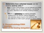 2 the methodology ferm possible tasks of the leading delegation16