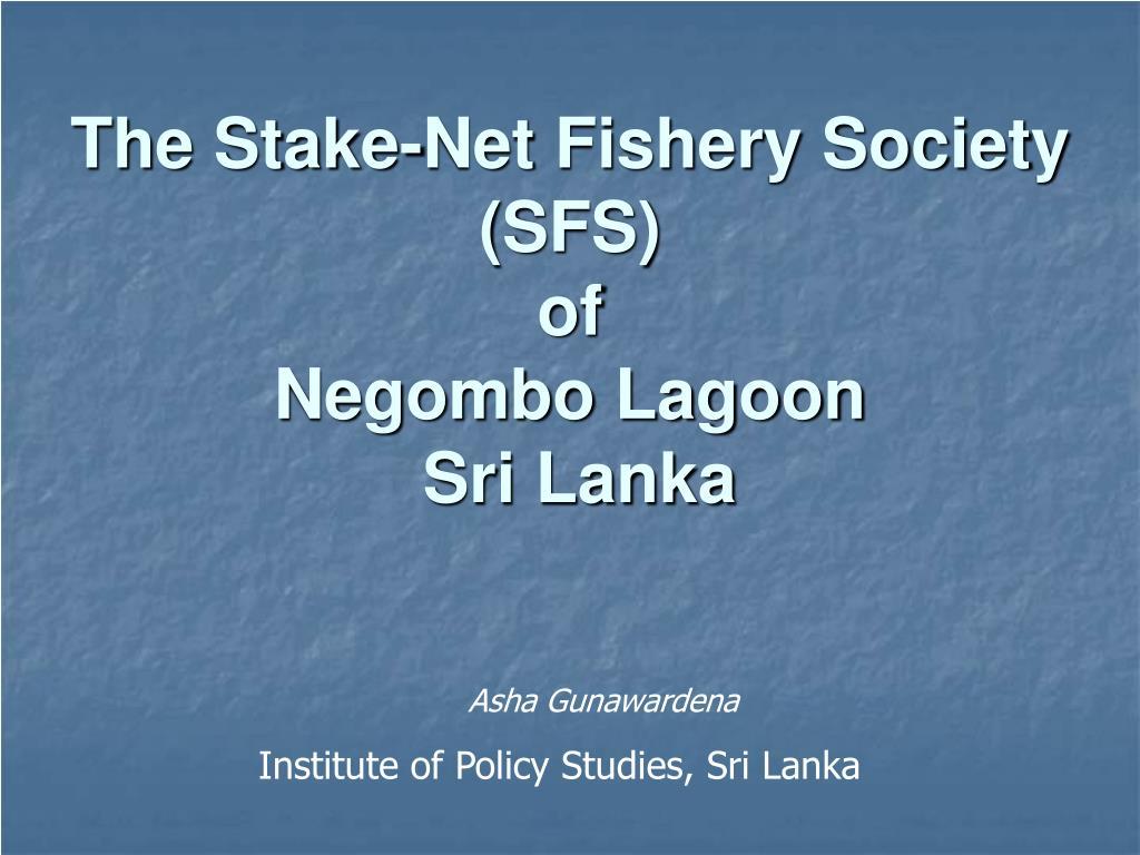 the stake net fishery society sfs of negombo lagoon sri lanka l.