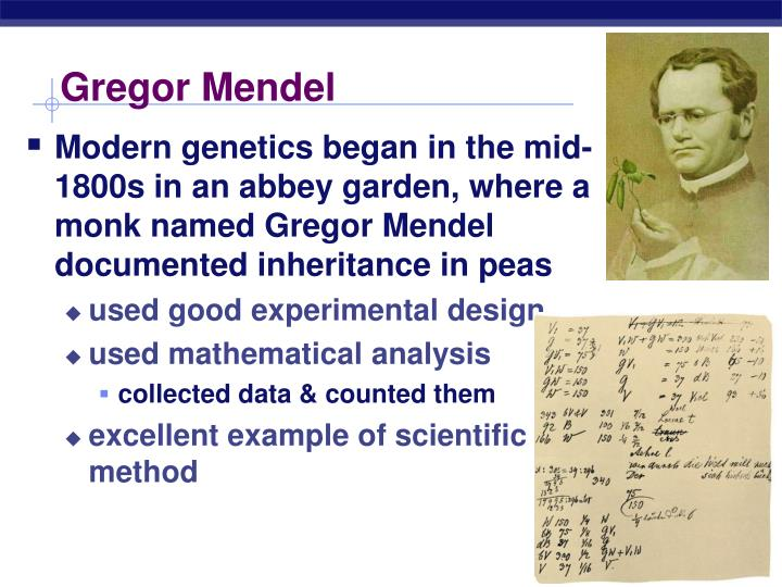 gregor mendel for kids essay Gregor mendel: gregor mendel, botanist, teacher, and augustinian prelate, the first person to lay the mathematical foundation of the science of genetics, in what came to be called mendelism his monumental achievements were not well known during his lifetime he gained renown when his work was rediscovered decades after his death.