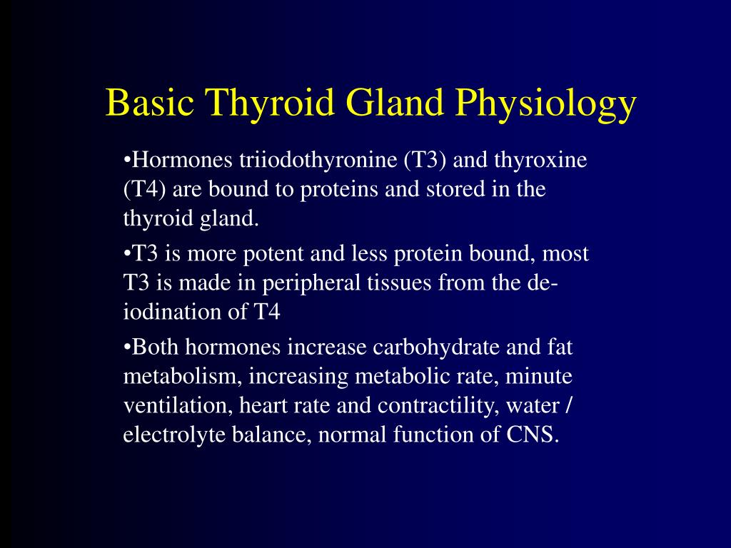 Basic Thyroid Gland Physiology