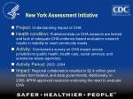new york assessment initiative33