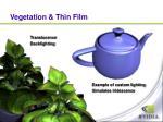 vegetation thin film