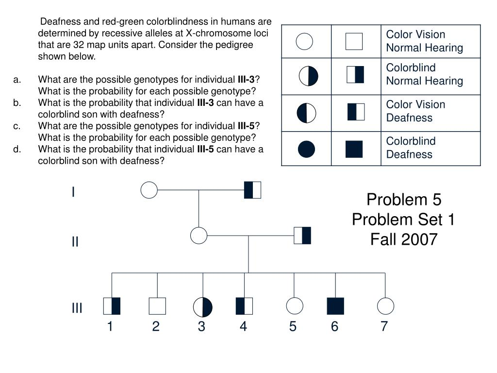 Deafness and red-green colorblindness in humans are determined by recessive alleles at X-chromosome loci that are 32 map units apart. Consider the pedigree shown below.