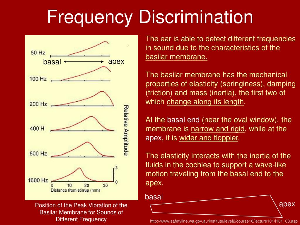 Frequency Discrimination