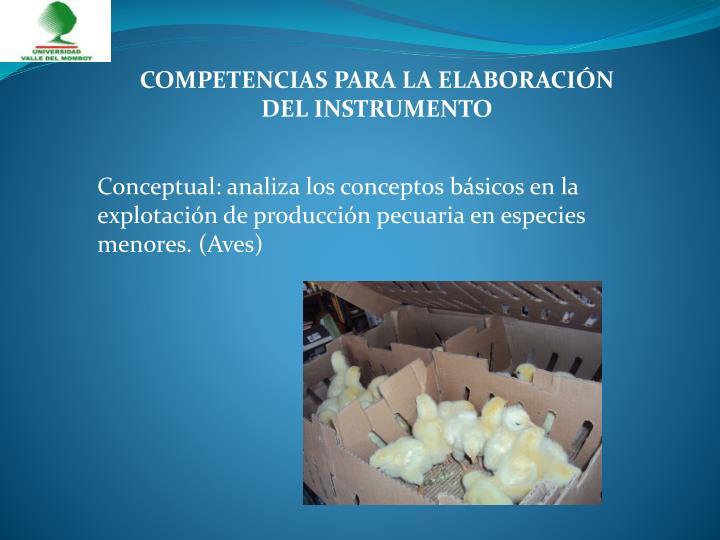 COMPETENCIAS PARA LA ELABORACIÓN DEL INSTRUMENTO