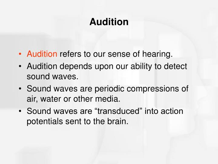 Audition3