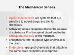the mechanical senses47