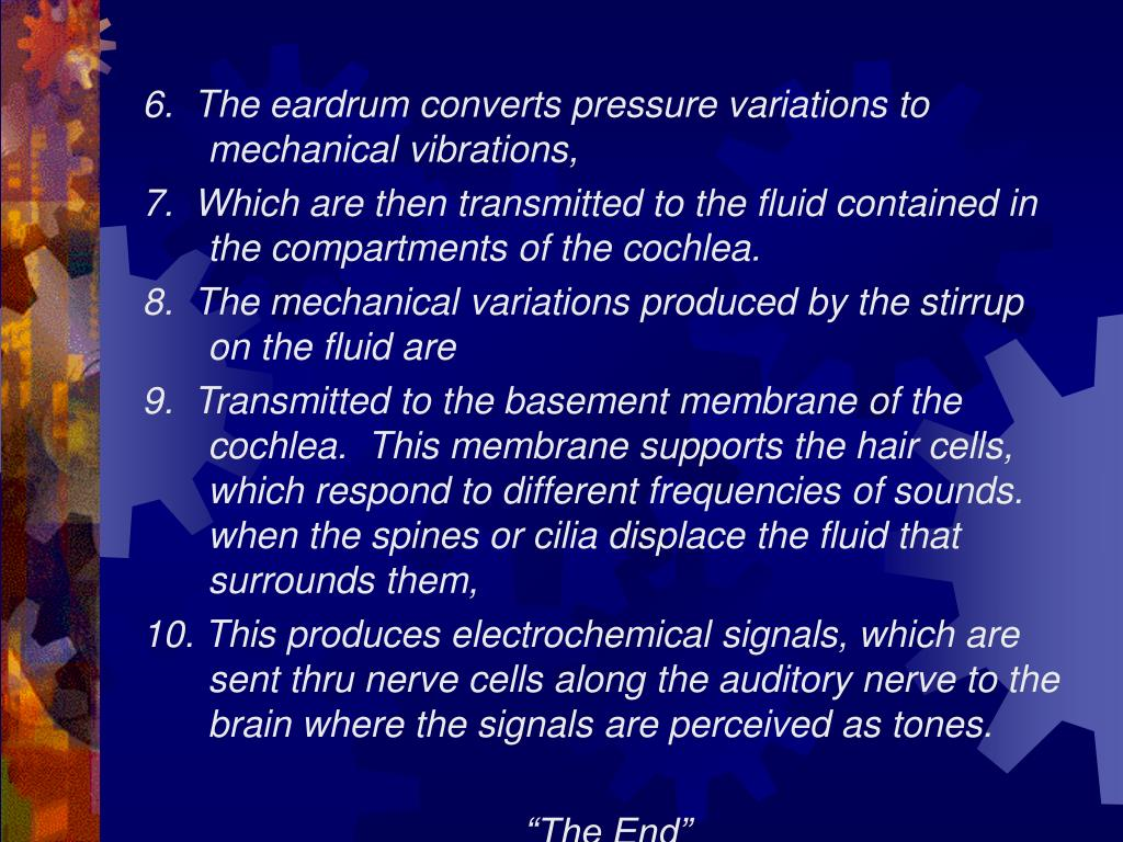 6.  The eardrum converts pressure variations to mechanical vibrations,