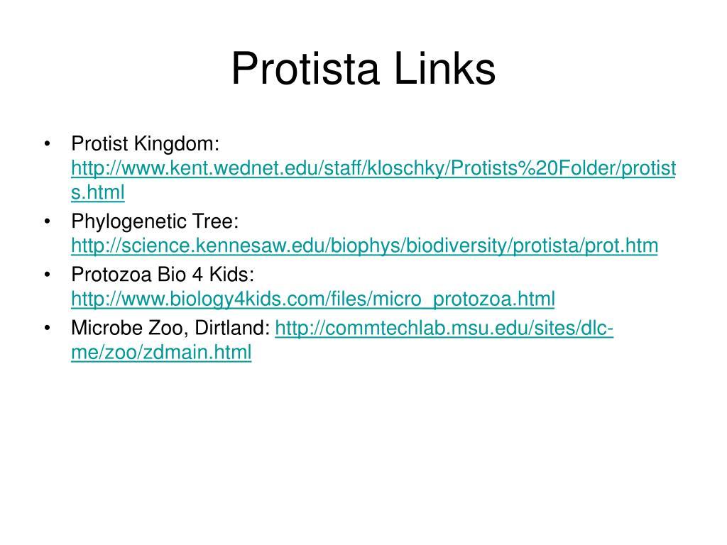 Protista Links