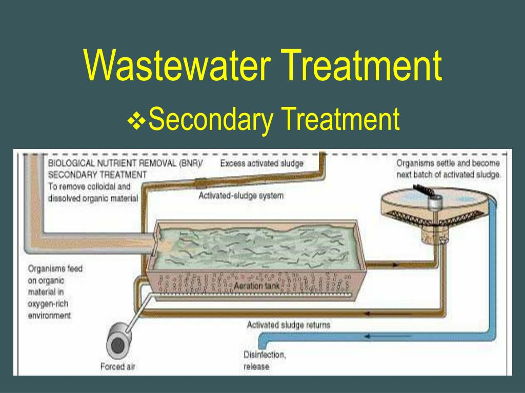 PPT - Wastewater Treatment PowerPoint Presentation - ID:738931
