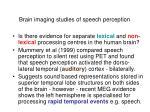 brain imaging studies of speech perception