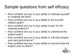 sample questions from self efficacy