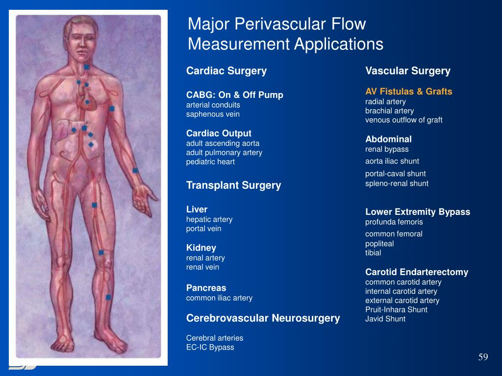 Major Perivascular Flow Measurement Applications