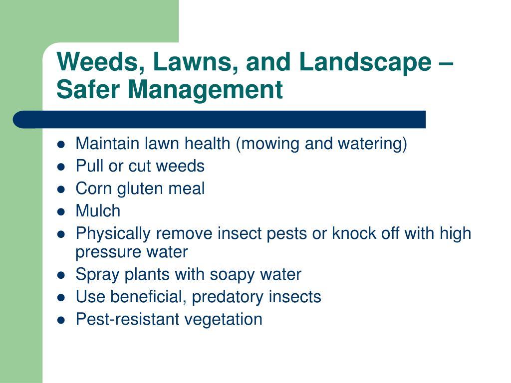 Weeds, Lawns, and Landscape – Safer Management