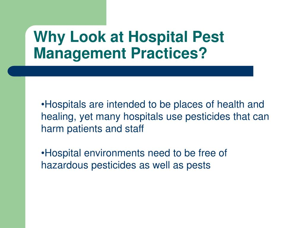 Why Look at Hospital Pest Management Practices?