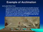 example of acclimation