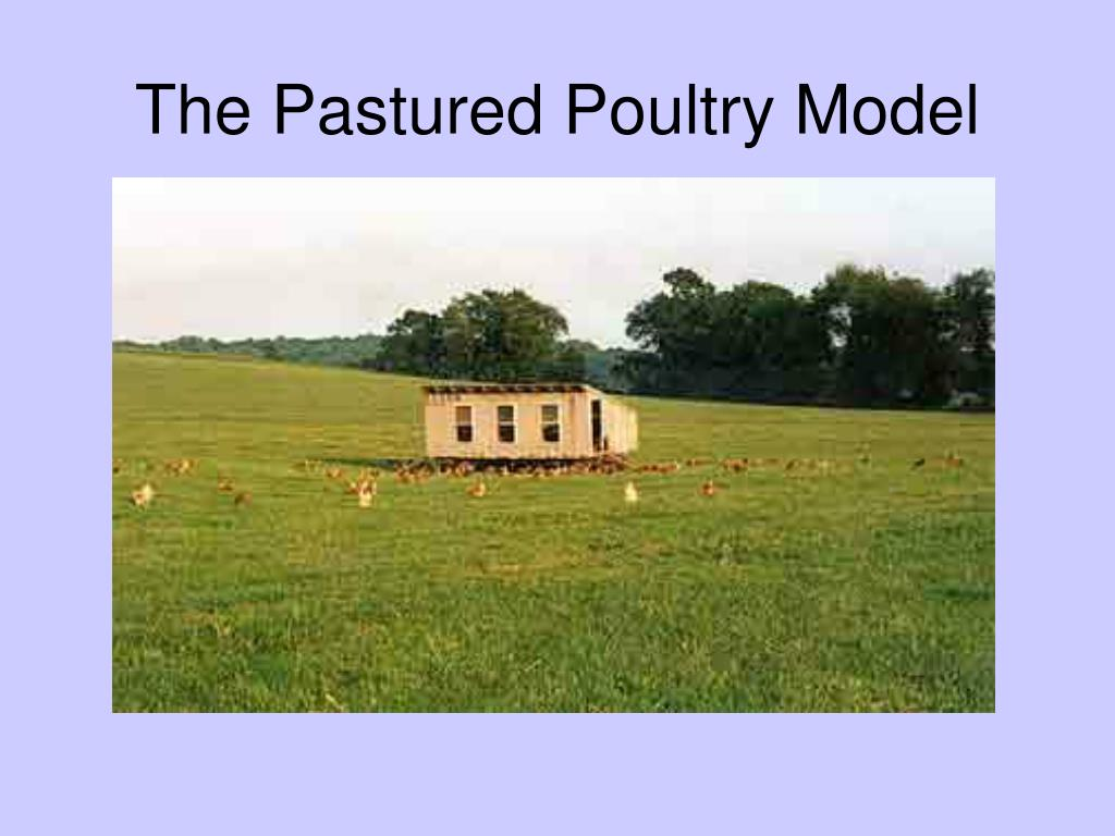 The Pastured Poultry Model