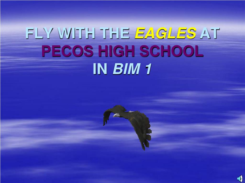 fly with the eagles at pecos high school in bim 1 l.