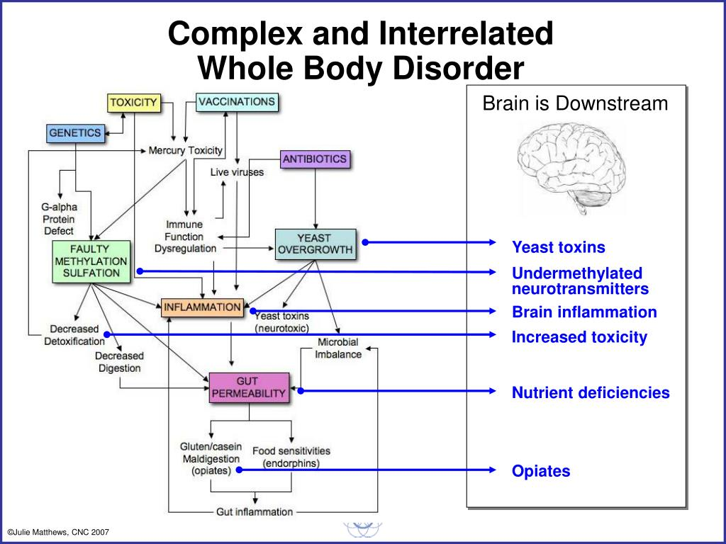Brain is Downstream