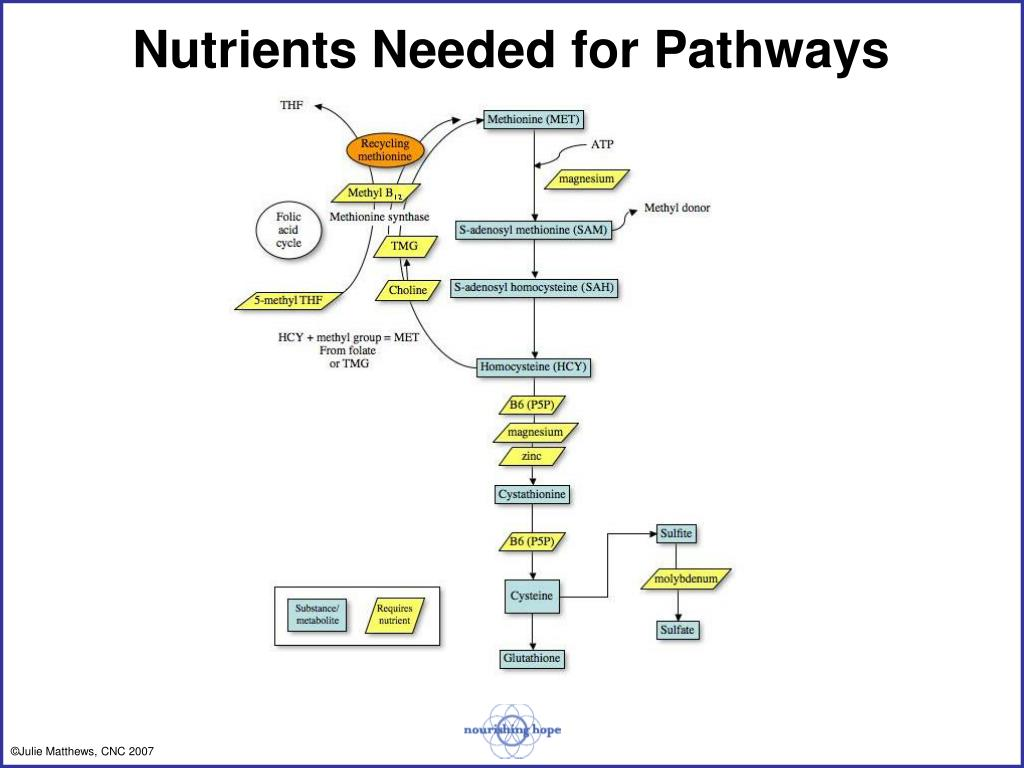 Nutrients Needed for Pathways