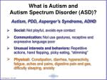 what is autism and autism spectrum disorder asd
