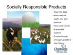 socially responsible products