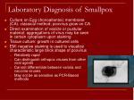 laboratory diagnosis of smallpox