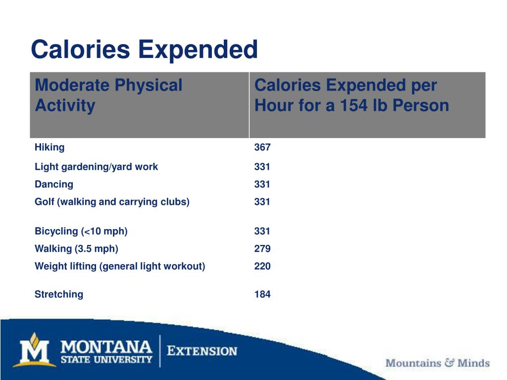 Calories Expended