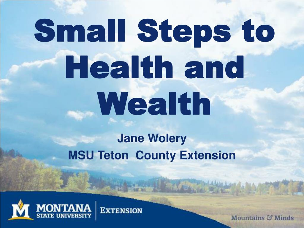 small steps to health and wealth l.