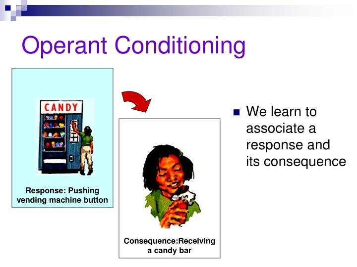 operant conditioning learning Operant conditioning, sometimes also known as skinnerian conditioning or radical behaviorism is a behaviorist learning approach similar to classical conditioning, mostly influenced by early theoretical and experimental works of american psychologist burrhus frederic skinner from the 1950s.