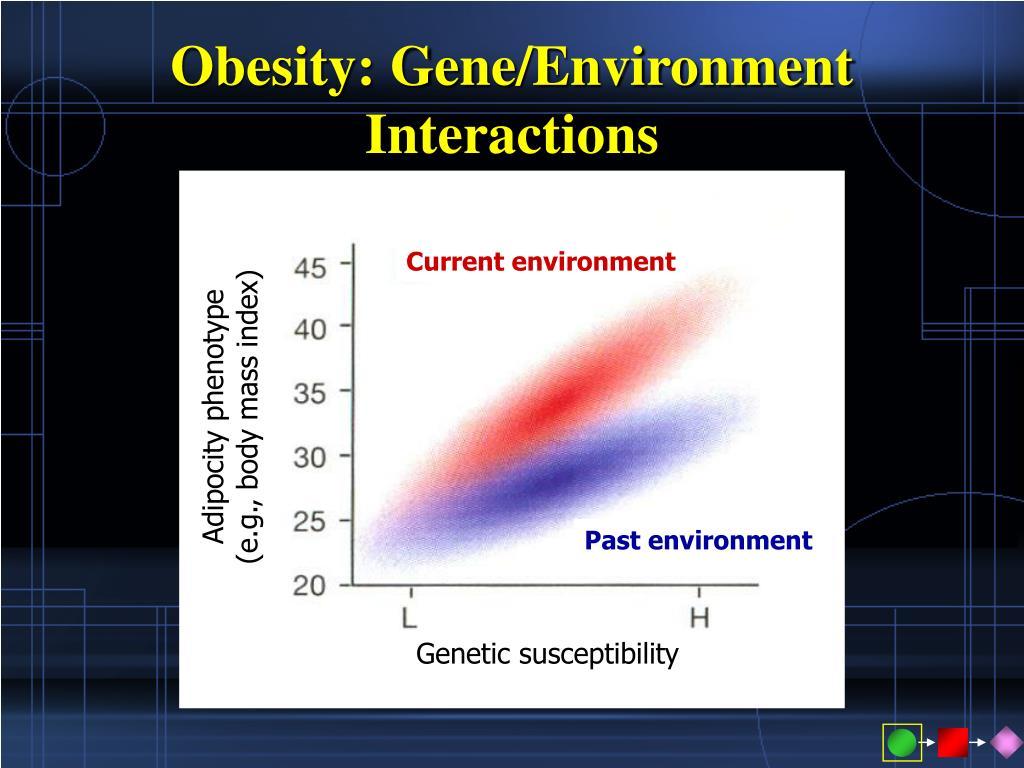 Obesity: Gene/Environment Interactions