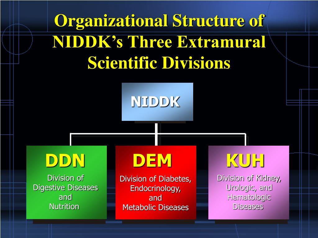 Organizational Structure of NIDDK's Three Extramural Scientific Divisions
