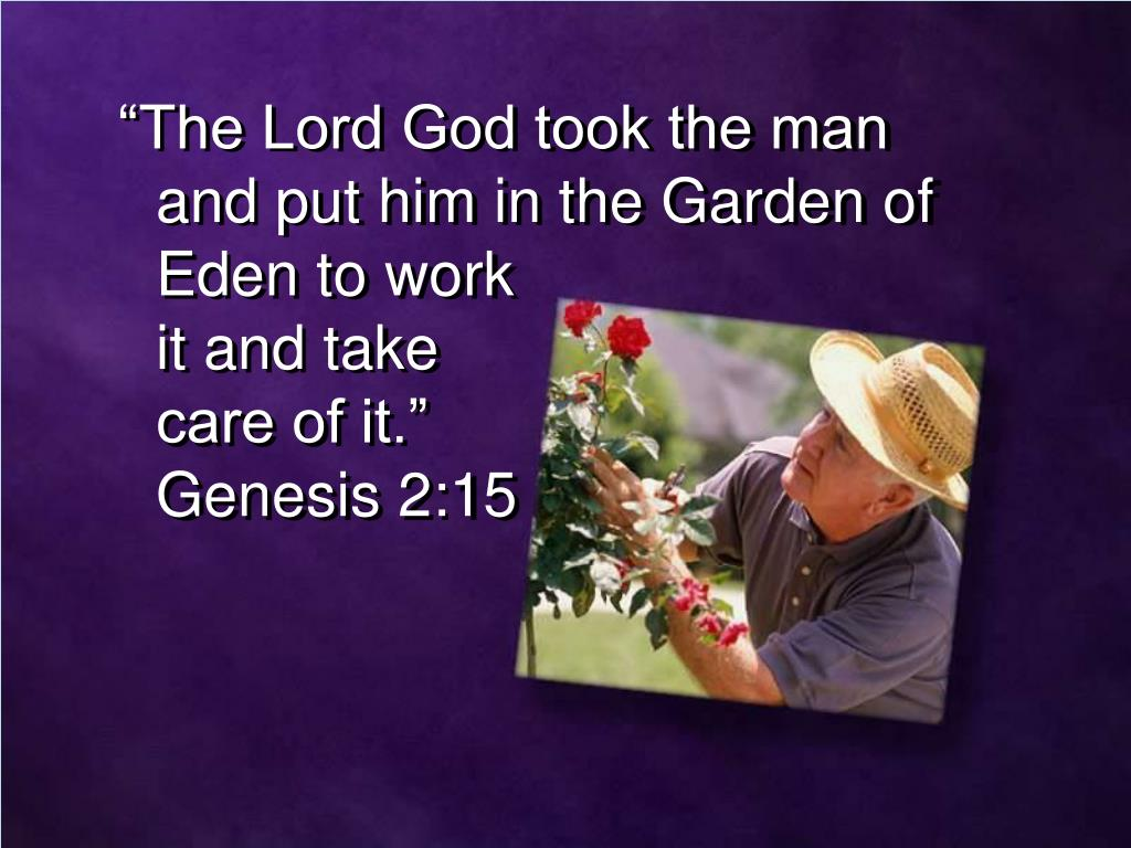 """The Lord God took the man and put him in the Garden of Eden to work"
