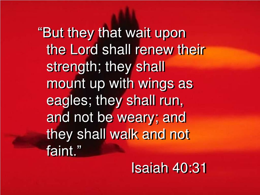 """But they that wait upon the Lord shall renew their strength; they shall mount up with wings as eagles; they shall run, and not be weary; and they shall walk and not faint."""