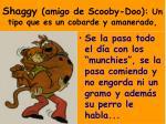 shaggy amigo de scooby doo un tipo que es un cobarde y amanerado