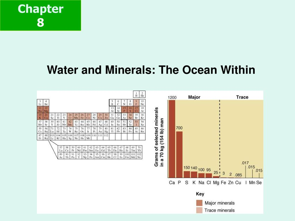 water and minerals the ocean within l.