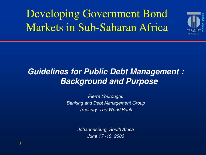 Developing Government Bond Markets in Sub-Saharan Africa