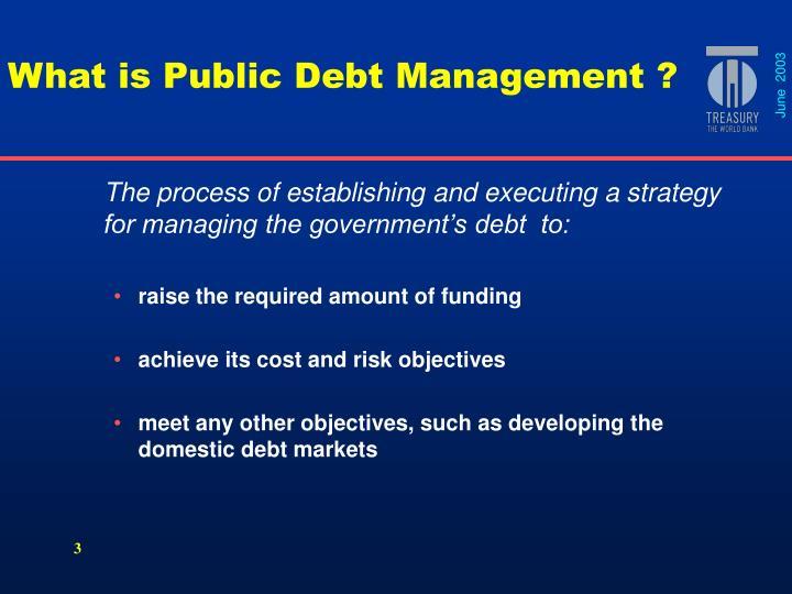 What is public debt management
