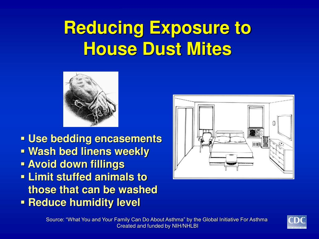 reducing exposure to house dust mites l.