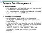 external debt management
