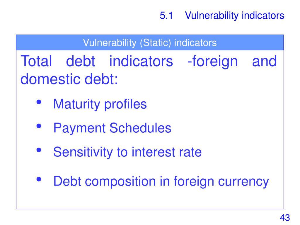 Vulnerability (Static) indicators