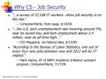 why cs job security