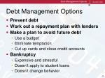debt management options