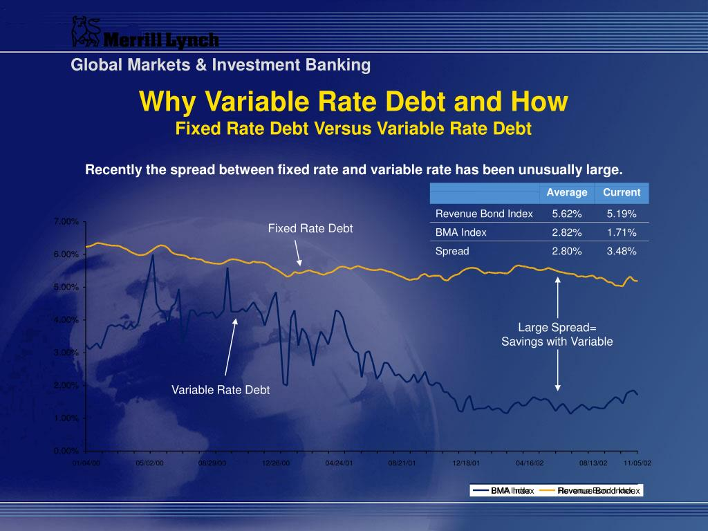 Fixed Rate Debt