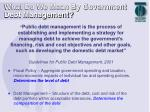 what do we mean by government debt management