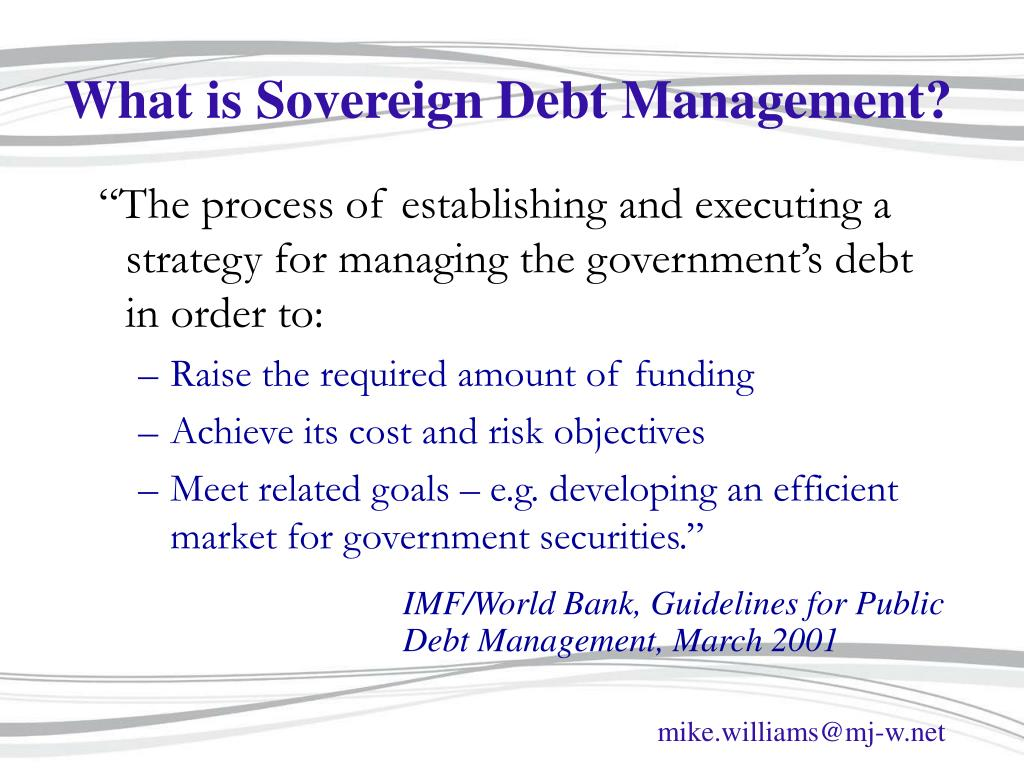 What is Sovereign Debt Management?