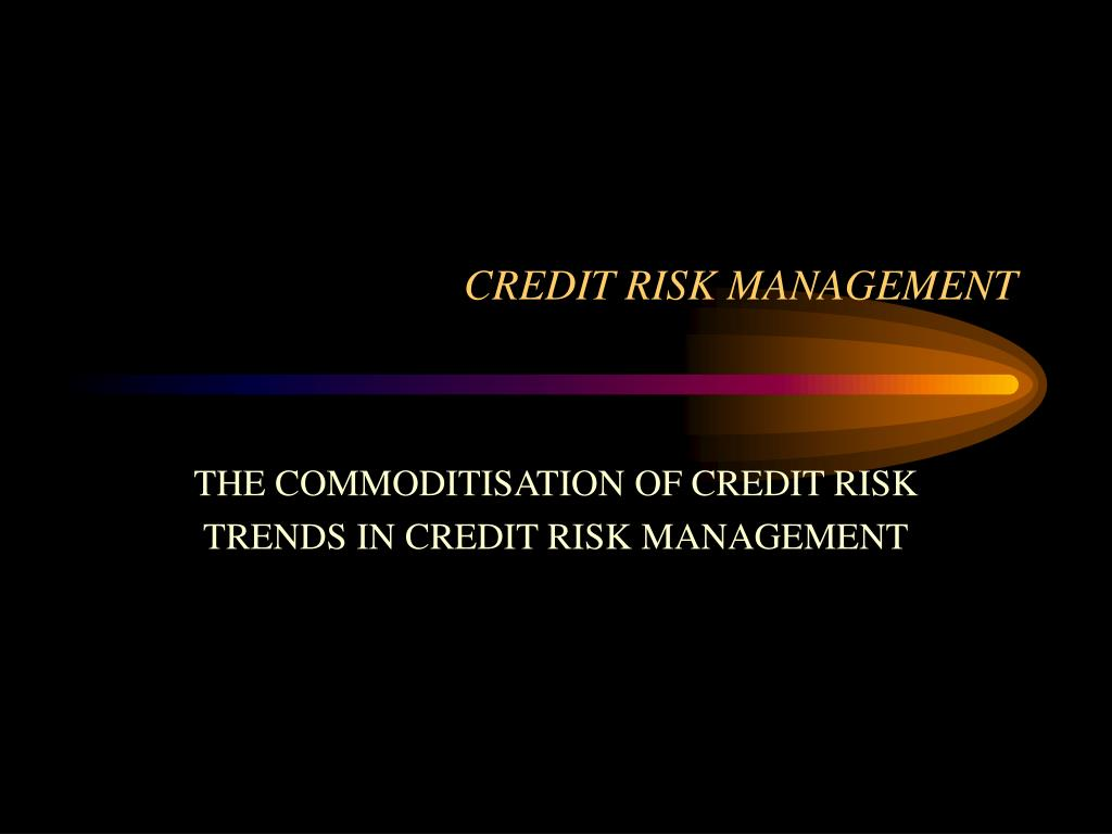 credit risk management l.