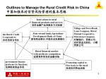 outlines to manage the rural credit risk in china