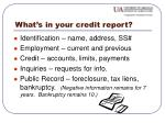 what s in your credit report