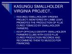 kasungu smallholder virginia project